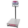 Bench Scales and Floor Scales